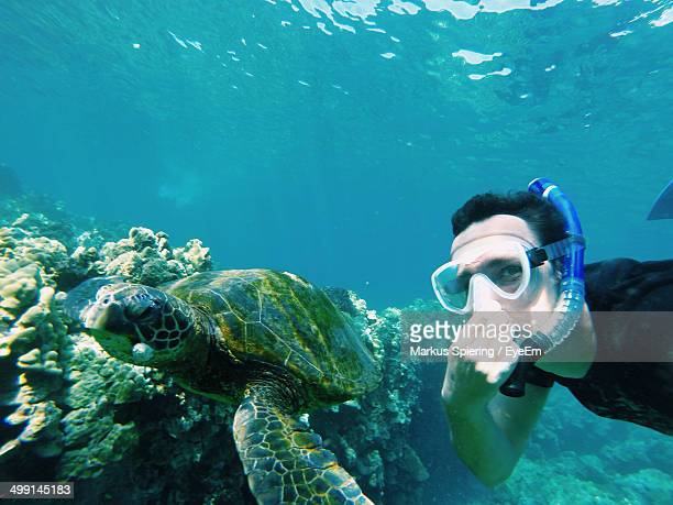 Portrait of man with turtle underwater