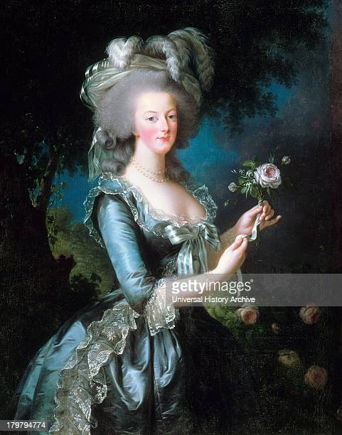 Portrait of MarieAntoinette with the rose Oil on canvas Versailles Dated 1783 and painted by VigéeLe Brun