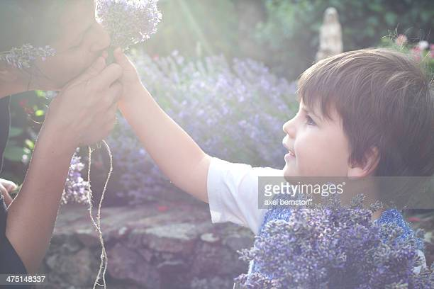 Portrait of mother and toddler son smelling lavender