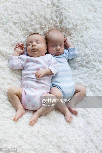 Portrait of newborn twins sleeping side by side