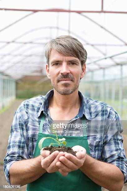 Portrait of organic farmer holding seedling in polytunnel