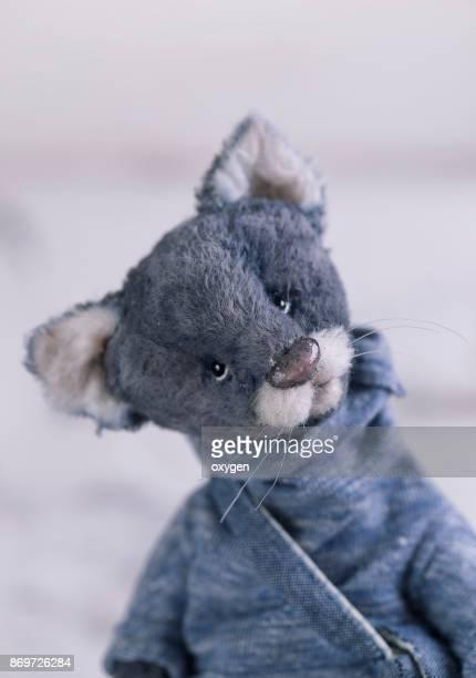 Portrait of Small Toy Cat in blue Sweatshirt