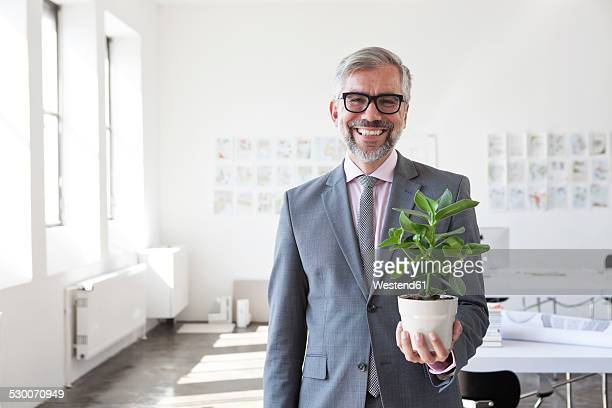 Portrait of smiling businessman with flower pot in an office