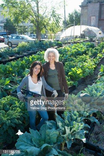 Portrait of Smiling Urban Community Garden Workers : Stock Photo