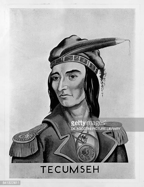 Portrait of Tecumseh Indian chief of the Shawnee or Shawnee nation native population of North America engraving United States of America 18th19th...