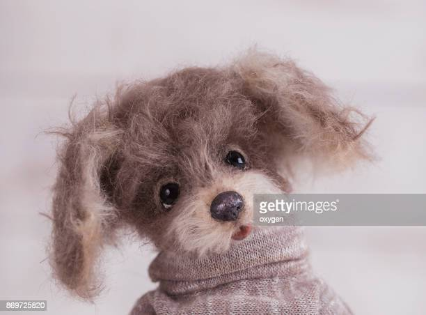 Portrait of Toy Teddy Dog stay on a beige clothes