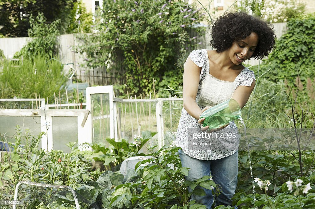 Portrait Of Woman Watering Her Plants And Crops Stock