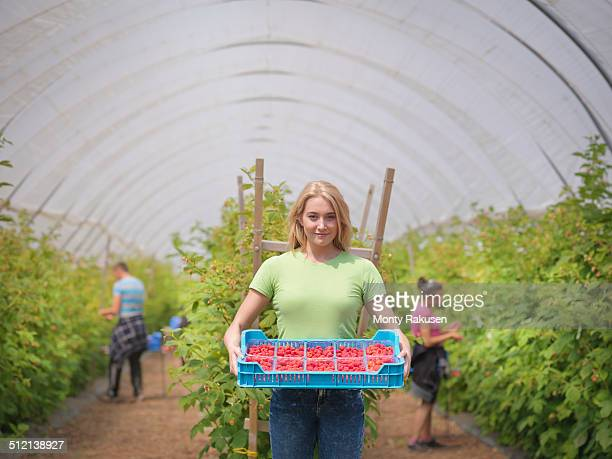 Portrait of worker with tray of raspberries on fruit farm