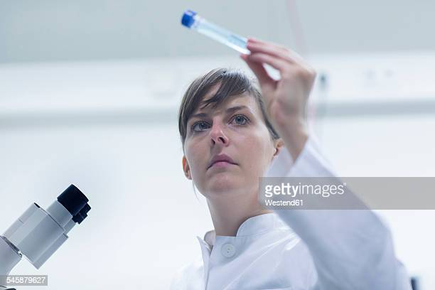 Portrait of young female natural scientist working at laboratory