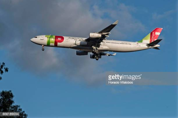 Portugal Airbus A340300 flies on its descent path into Humberto Delgado Airport on March 20 2017 in Lisbon Portugal TAP Portugal is the flag ship...