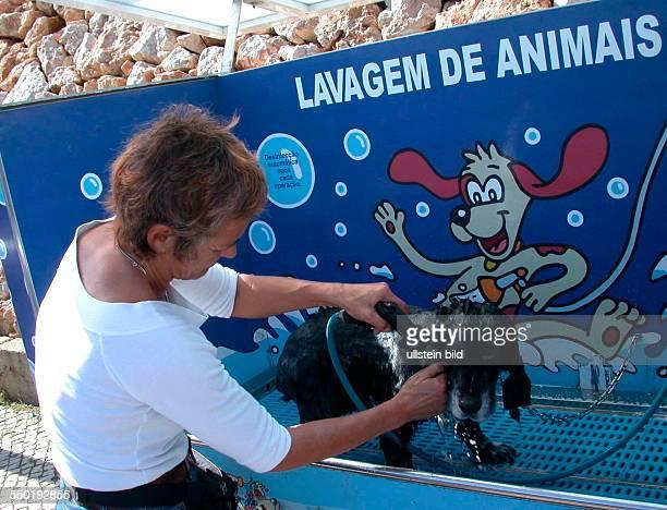 Portugal / Algarve Waschautomat fuer den Hund Geld einwerfen waschen shampoonieren ausspuelen fertig