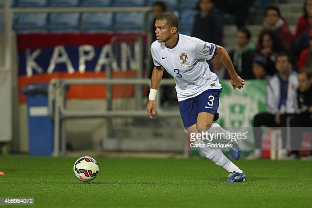 Portugal's defender Pepe during the EURO 2016 qualification match between Portugal and Armenia at the Estadio do Algarve on November 14 2014 in Faro...