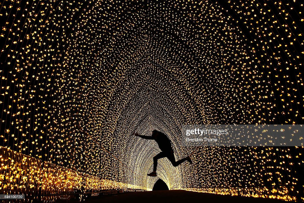 A poses for a photo inside the 'Cathedral of Light' at The Royal Botanic Gardens on May 25, 2016 in Sydney, Australia. Held annually, Vivid Sydney is the world's largest festival of light, music and ideas.