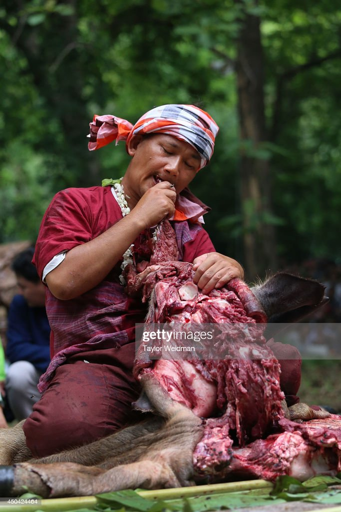A possessed medium eats the meat of a ritually sacrificed buffalo during the Pu Sae Ya Sae Festival on June 11, 2014 in Hang Dong, Thailand. During the festival, a shaman or medium is possessed by local mountain spirits and begins drinking the blood and eating the raw flesh of a ritually sacrificed buffalo. Local tradition holds that these spirits must be placated in this annual ceremony, otherwise the spirits will return to their practice of killing and eating humans.