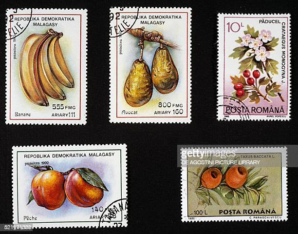 Postage stamps honouring fruit left postage stamp depicting bananas avocados and peaches Madagascar right postage stamps depicting the fruit of the...
