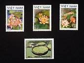 Postage stamps honouring water flowers top postage stamps depicting water lilies Vietnam bottom postage stamp depicting Giant waterlily Romania...