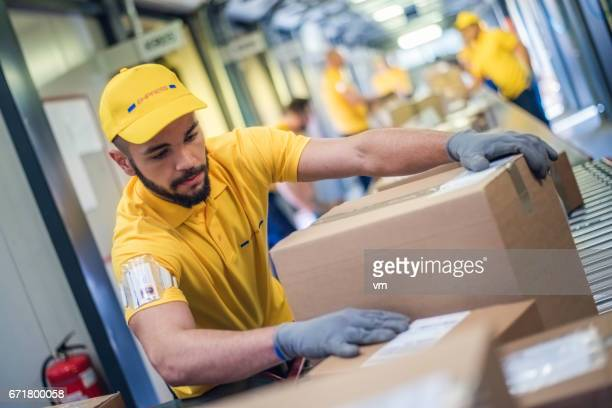 Postal worker sorting through box packages