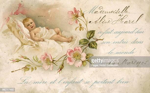 Postcard Babies
