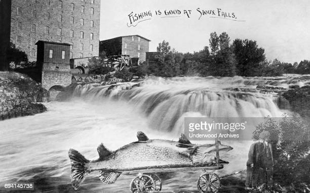 Postcard headed 'Fishing is Good at Sioux Falls' features waterfalls and building in the background and an inserted image of two men as they pull an...