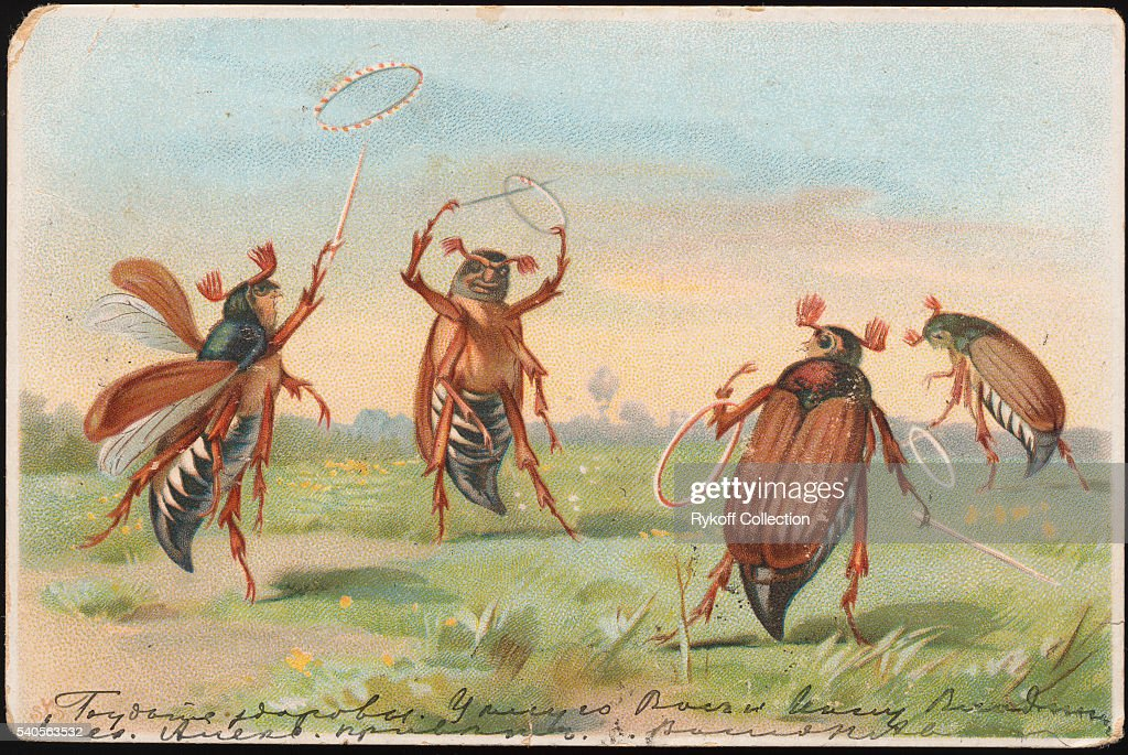 Postcard of Insects Playing Ring Toss