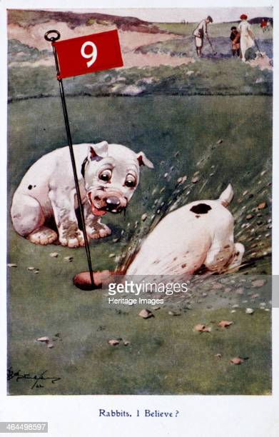 Postcard with golfing theme c1920s Illustration shows a pair of dogs rummaging around the 9th hole on a golf course