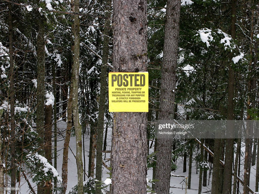 Posted private property sign on a tree in the woods