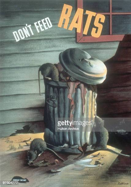 Poster features an illustration of a group of rats as they eat from an open garbage can accompanied by the text 'Don't Feed Rats' 1944 There is also...