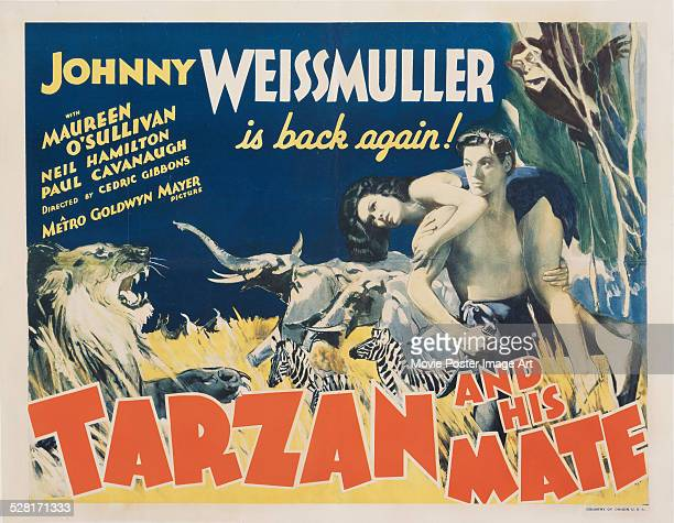 A poster for Cedric Gibbons' 1934 action film 'Tarzan and His Mate' starring Johnny Weissmuller and Maureen O'Sullivan