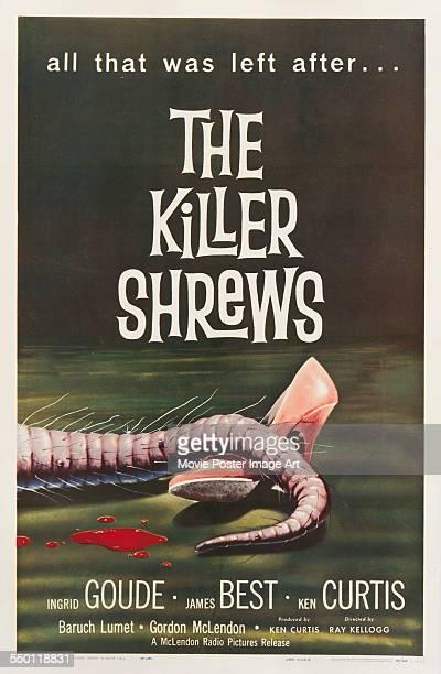 A poster for Ray Kellogg's 1959 horror film 'The Killer Shrews'