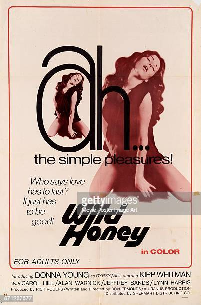 Image contains suggestive contentA poster for the exploitation film 'Wild Honey' starring Donna Young 1972