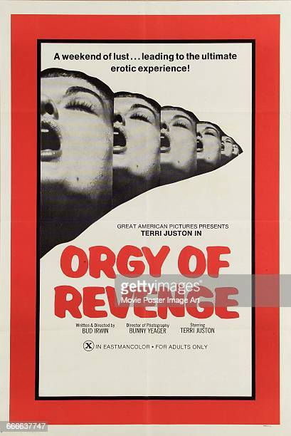 Image contains suggestive contentA poster for the pornographic film 'Room 11' aka 'Orgy of Revenge' written and directed by Bud Irwin and starring...