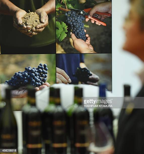 A poster of the harvesting of grapes is displayed at the Chinese company Grace Vinyard's booth during the 'VinExpo Nippon Tokyo' wine exhibition in...