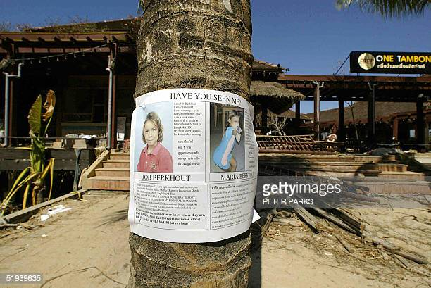 A poster on a palm tree shows two young children lost in the December 26 tsunamis at the Khao Lak resort in Thailand's Phang Nga province 12 January...