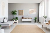 Posters on grey wall above white cupboard in bright living room interior with sofa and carpet. Real photo