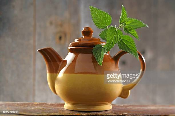 Pot of nettle tea