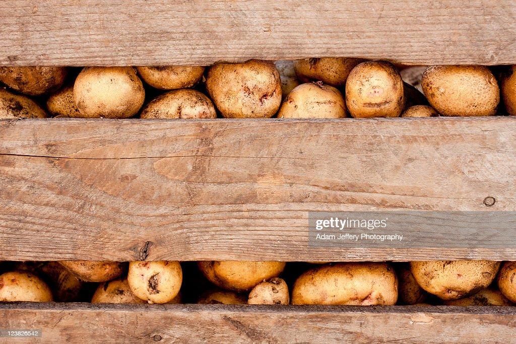 Potato crate