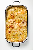 Potato gratin in roasting tin