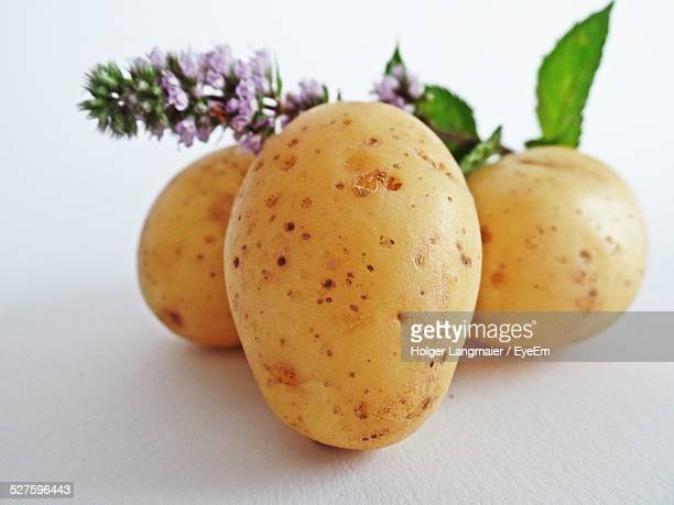 Potatoes And Flower Against White Background