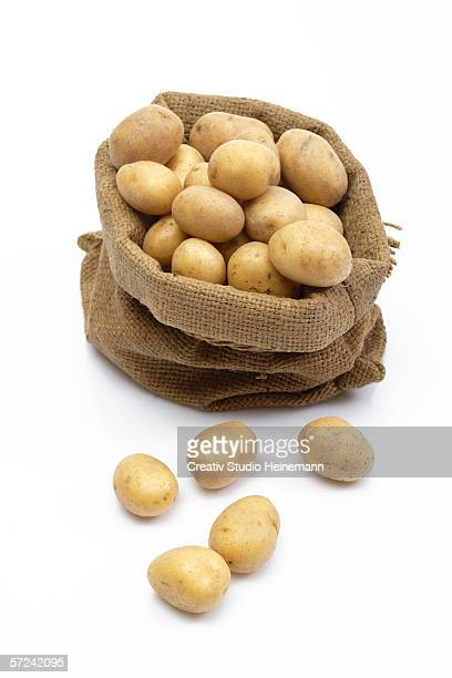 Potatoes in sack, elevated view