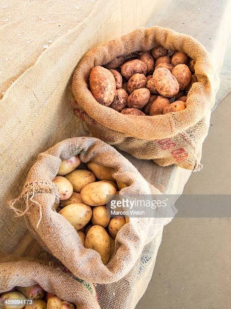 Potatoes in the Currumbin food market. Gold Coast