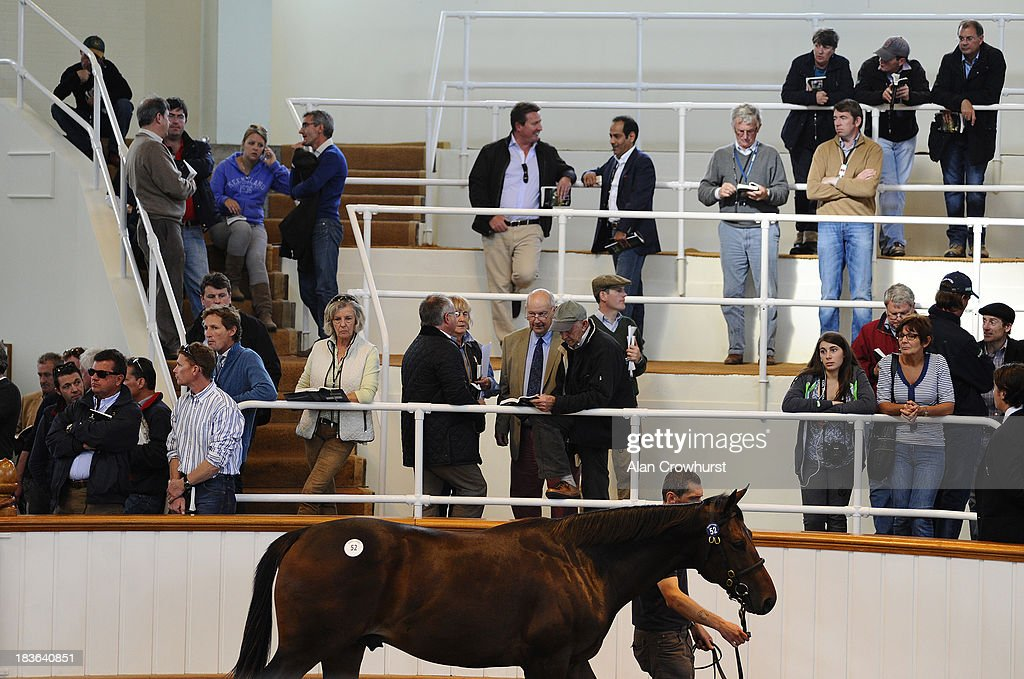 Potential bidders watch lot52 at Tattersalls yearling sales on October 08, 2013 in Newmarket, England.