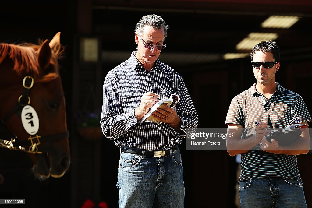 Potential buyers examine horses at the New Zealand Bloodstock 87th National Yearling Sales at Karaka on January 28, 2013 in Auckland, New Zealand.
