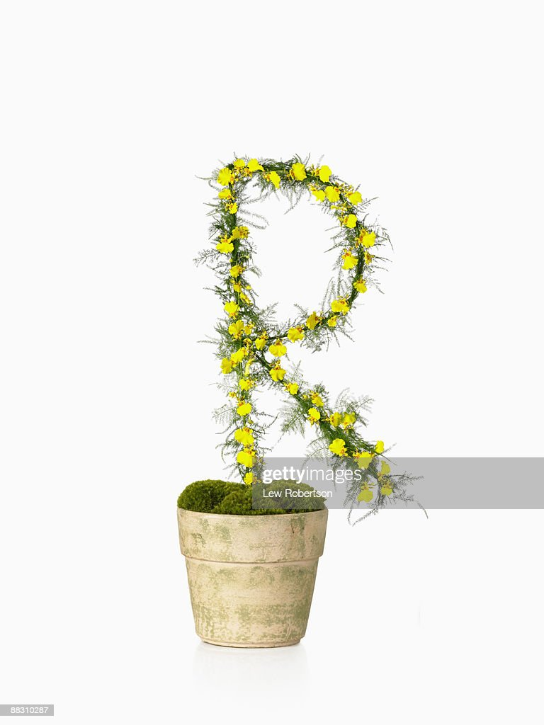 Potted plant as letter R