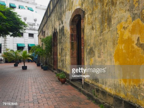 Potted plants against a wall, Old Panama, Panama City, Panama : Foto de stock
