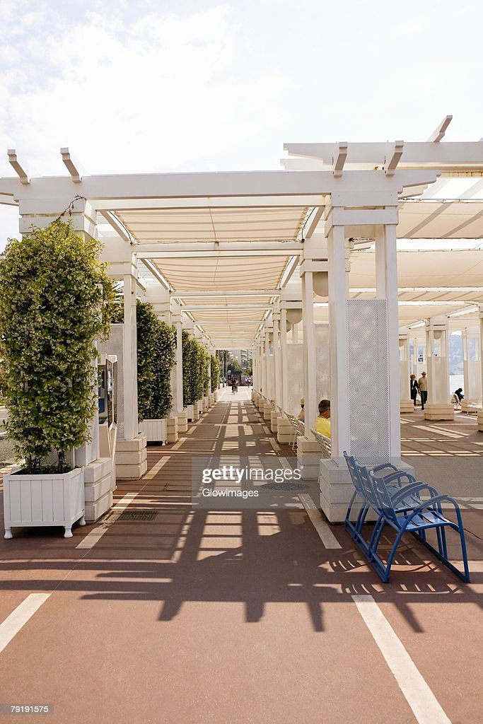 Potted plants along a walkway, Nice, France : Stock Photo