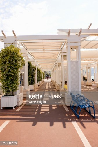 Potted plants along a walkway, Nice, France : Foto de stock