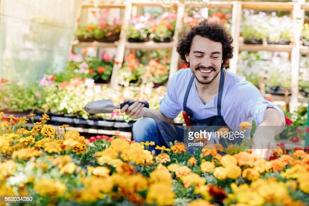 Potting flowers for the summer garden