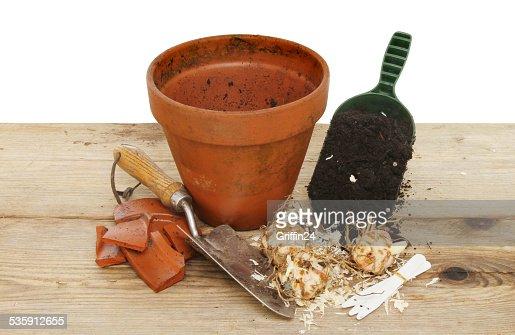 Potting : Stock Photo