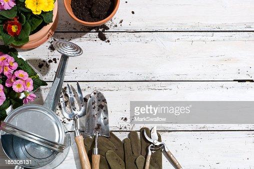 Potting plants and garden tools on patio floor