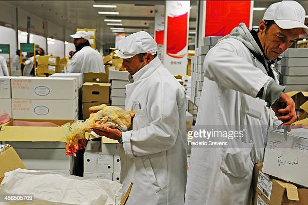 A poultry dealer checks capons in the poultry department of Rungis Market on December 13 2013 in Rungis France Rungis is the world's largest...